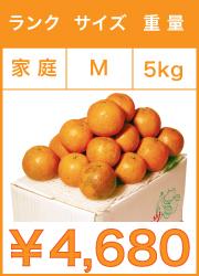タンカン 家庭用 mサイズ 5kg