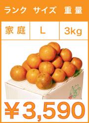 タンカン 家庭用 lサイズ 3kg