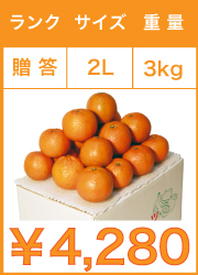 タンカン 贈答用 2lサイズ 3kg