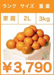 タンカン 家庭用 2lサイズ 3kg