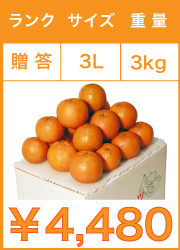 タンカン 贈答用 3lサイズ 3kg
