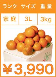 タンカン 家庭用 3lサイズ 3kg
